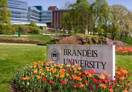 Brandeis University Tuition >> 2018 2019 Cost Of Attendance Brandeis University Univstats